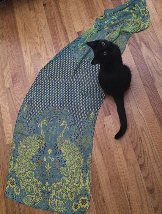 1) The scarf in the beginning, shown with kitten for scale.
